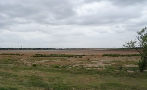 You can walk across Lake Wichita from the south shore of Fairway Blvd