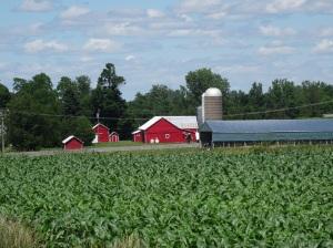 Grand Isle Farm