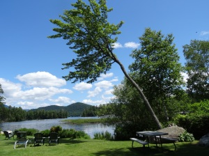 View of Lake Placid from the back of WIldwood Lodge