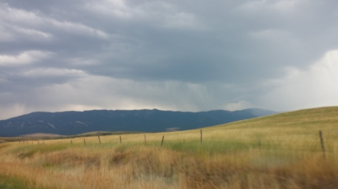 Along Hwy 72 on the edge of Custer Gallatin National Forest
