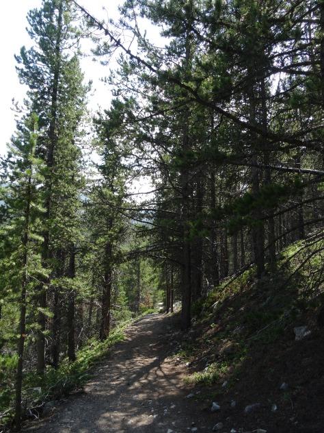 Basin Creek Lakes Trail