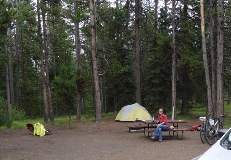 Grant Village Campsite