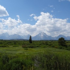 Tetons from Rockefeller Memorial Parkway
