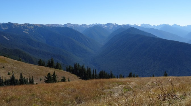 Olympic National Park ~ August 13-15, 2014