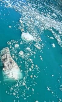 Ice floe, John Hopkins Inlet