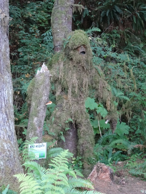 Mossquatch