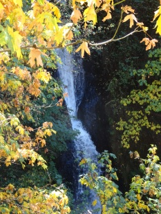 Fall Colors at Shepperd's Dell Falls