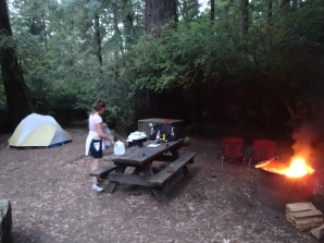 Jedediah Smith Redwoods SP Campsite