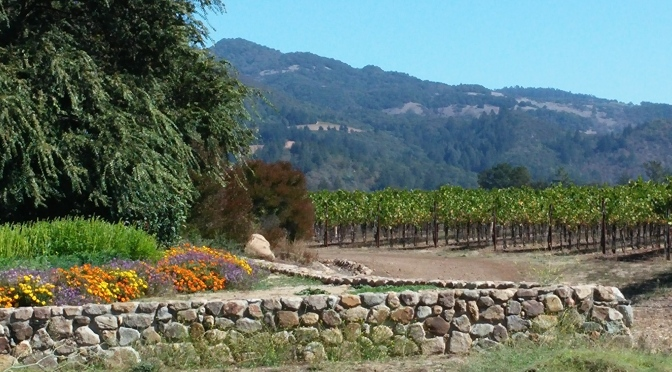 Sonoma & Napa Counties, California ~ September 28 – October 1, 2014