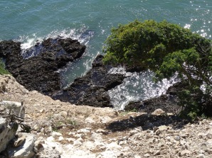 Alcatraz Cliff