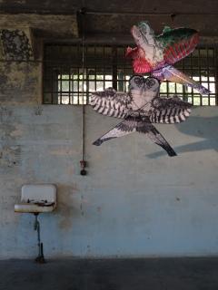 Weiwei Installation
