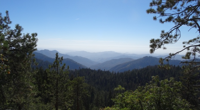 Kings Canyon & Sequoia National Parks ~ October 11, 2014