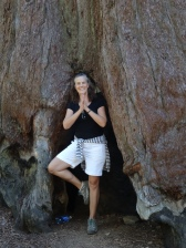 Mariposa Grove 10 - Tree Pose