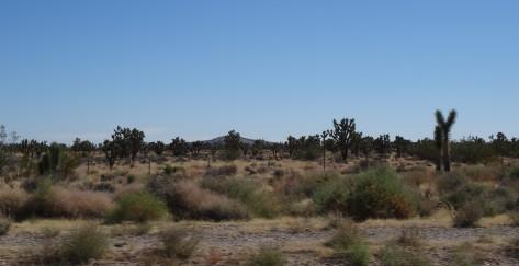 01 Approaching Las Vegas