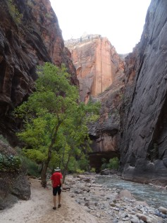 Entering the Narrows 2, Zion NP