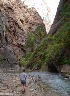 Entering the Narrows, Zion NP