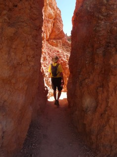 Queen's Garden Trail, Bryce Canyon NP 13