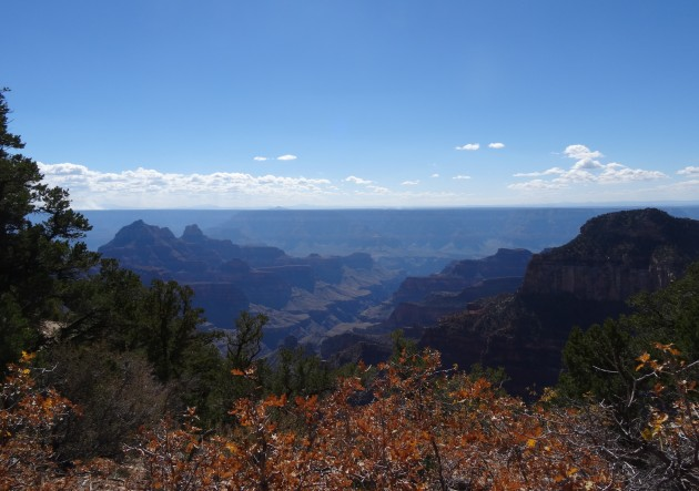 08 Grand Canyon, North Rim 2