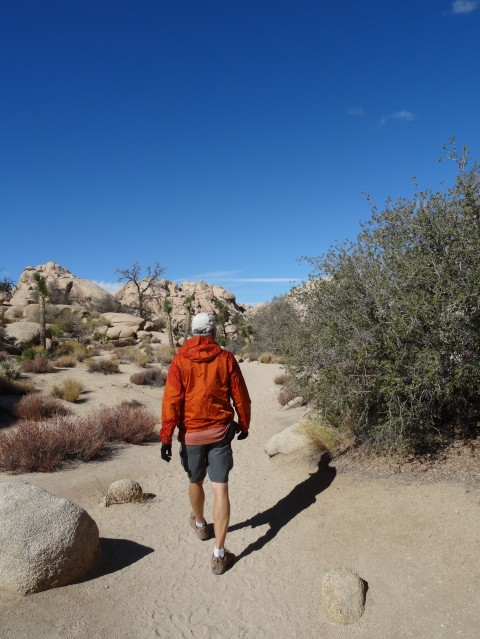 Trey, Joshua Tree Nat'l Park