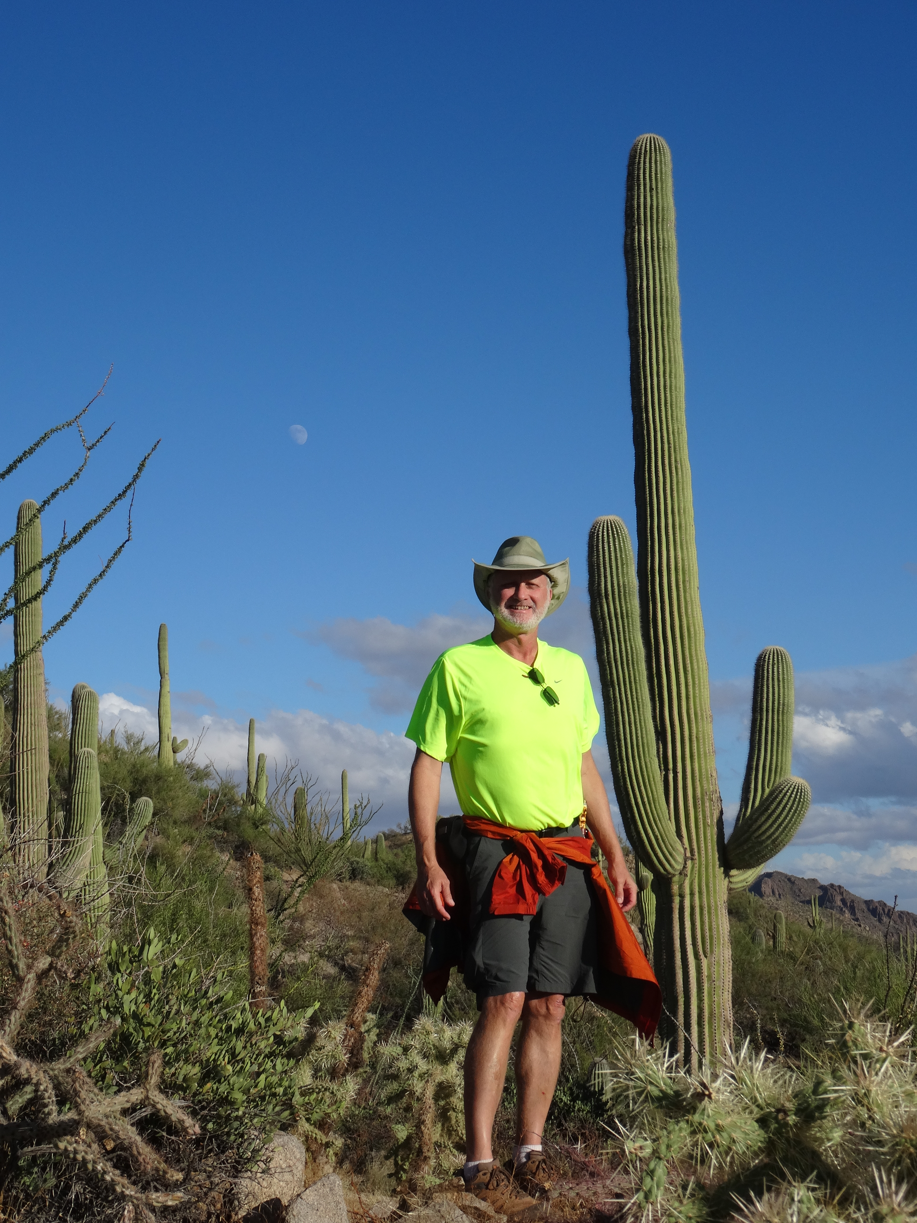 Hugh Norris Ridge Trail, Saguaro NP W 2