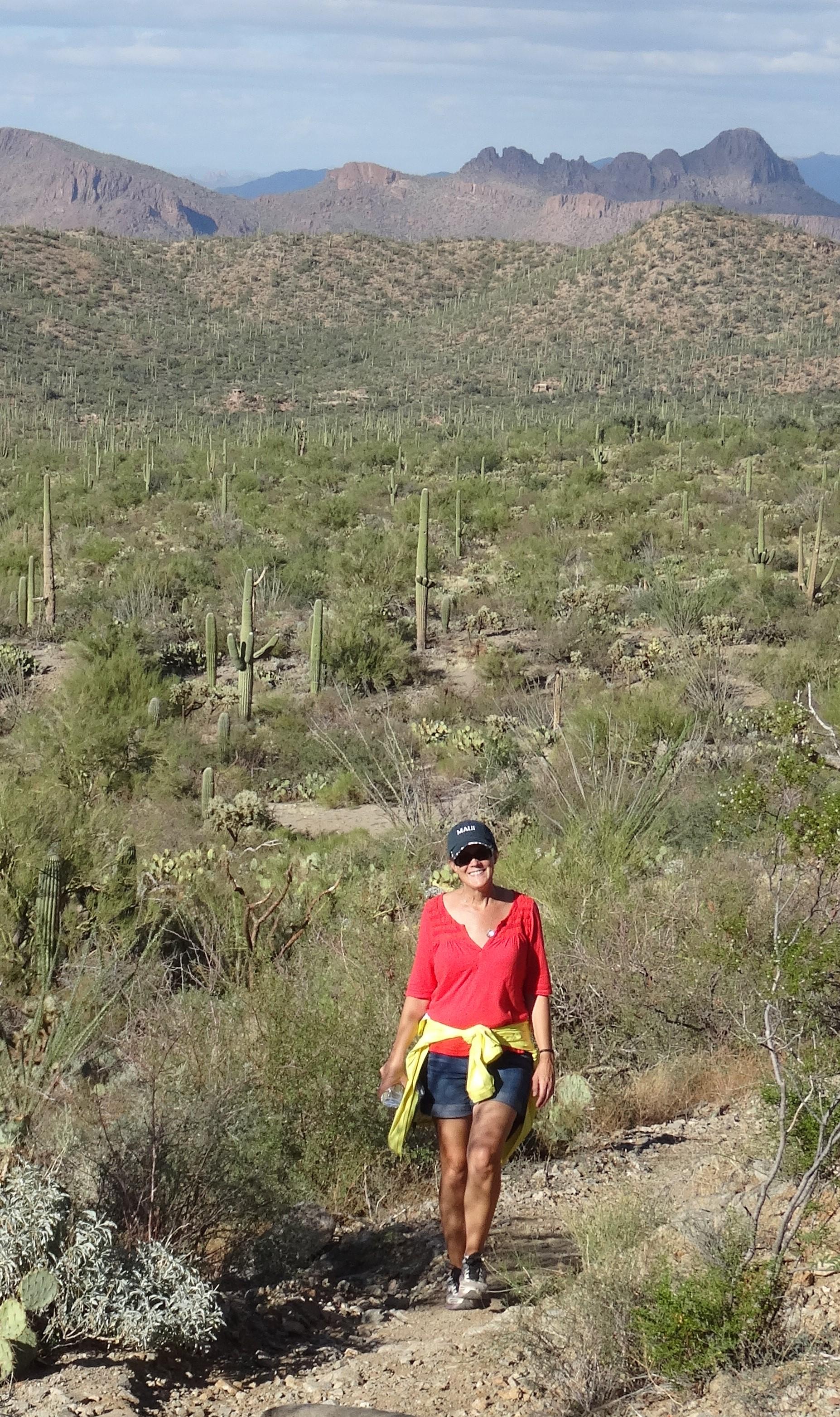 Sendero-Esperanza Trail, Saguaro NP W 2