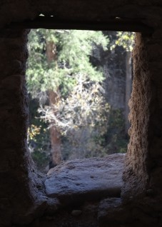 Gila Cliff Dwellings NM 6